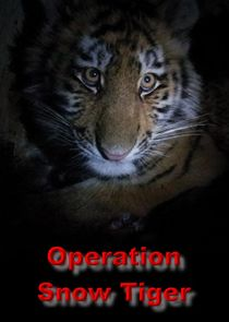 Operation Snow Tiger